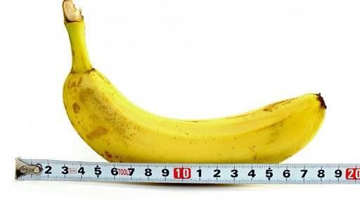 Какой размер пениса принято считать нормой?