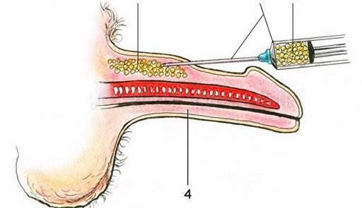 Виды лечения и диагностики